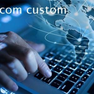 Force.com Custom site student Registration