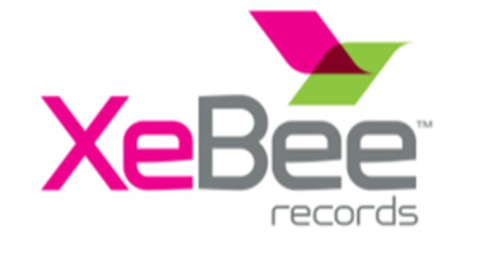 XeBee and Salesforce Integration